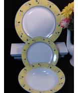 Royal Doulton Blueberry Dinner Salad Plate Soup Bowl  - $55.99