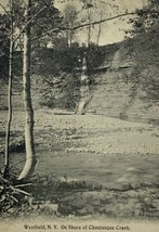Old Divided Back Postcard On Shore of Chautauqua Creek in Westfield, New... - $12.69