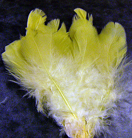 Yellow Feathers Natural Fly Tying Arts & Crafts 10