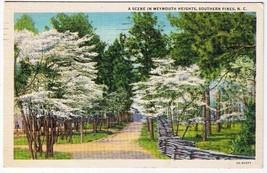 North Carolina Postcard Weymouth Heights Southern Pines - $2.27