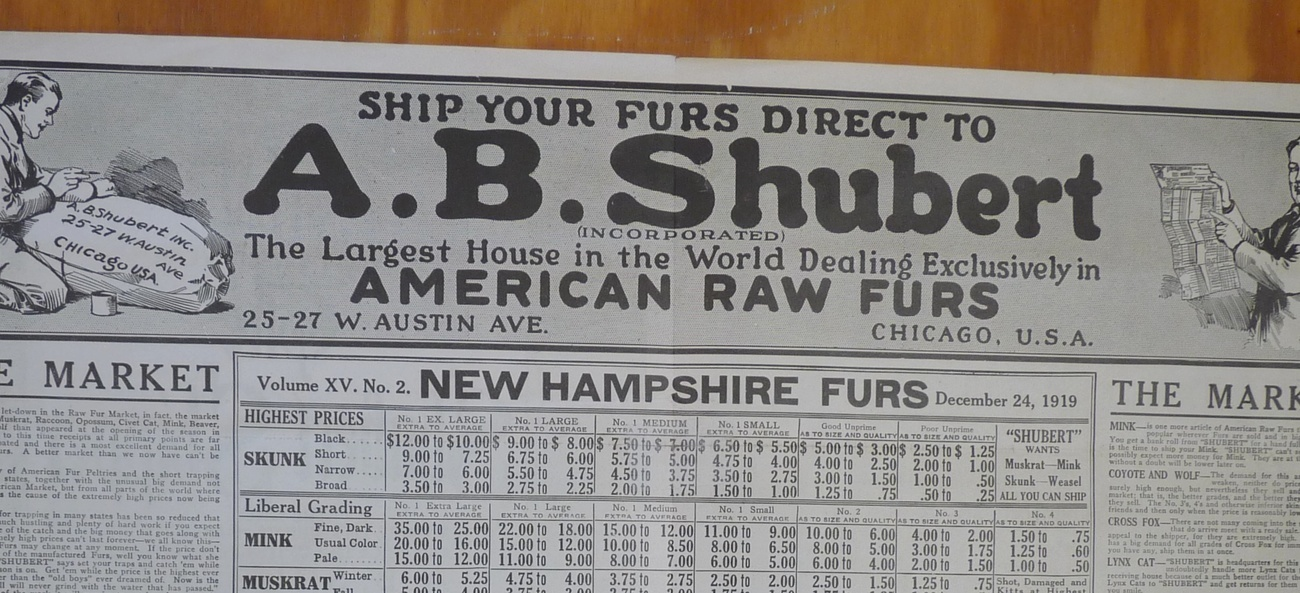 Shubert Shipper vintage fur trade newspaper 1919 NH furs ephemera trapping