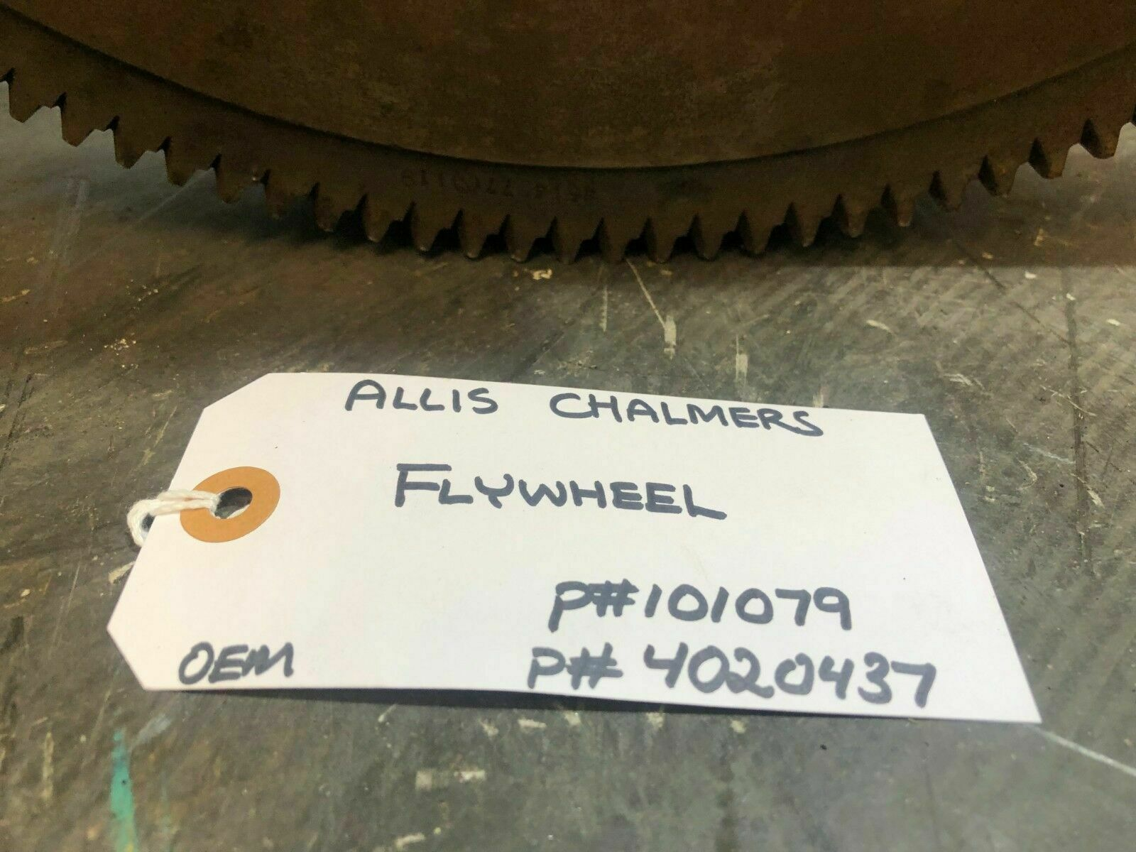FLYWHEEL ALLIS CHALMERS 101079 / 4020437 OEM image 6