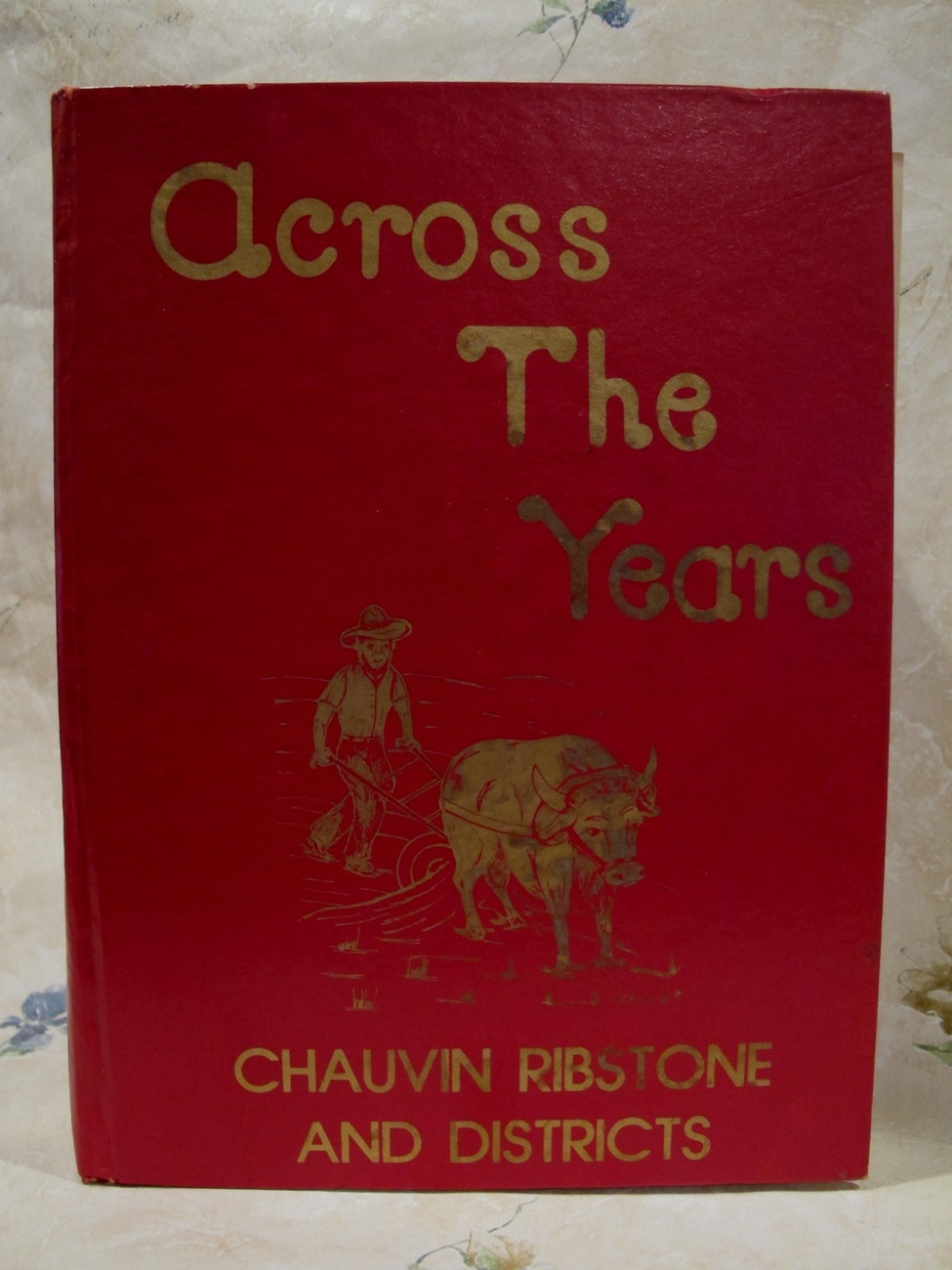 Chauvin Ribstone Districts History Book Genealogy Family Tree Across The Years