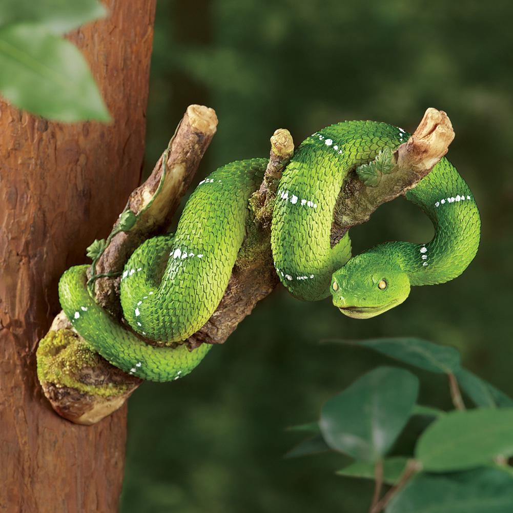 Snake tree