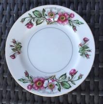 Monarch China Montana Rose Bread Dessert Plate - $12.20