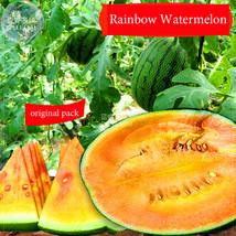 BEST PRICE 200 Seeds Rainbow Watermelon,DIY Watermelon Seeds BD240H DG - $66.00