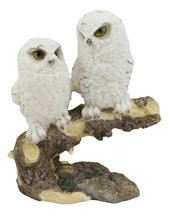 "White Baby Owls Perching On Winter Forest Tree Branch Statue 5.75""H Owle... - $21.99"