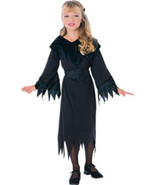 Wicked Witch Halloween Costume Size 4-6 Years - $15.00