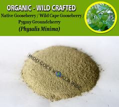 POWDER Native Gooseberry Ciplukan Physalis Peruviana Organic Wild Crafte... - $16.40+