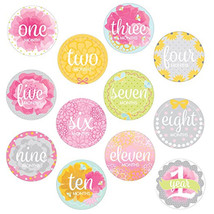 Baby Girls Monthly Milestone Belly Stickers Photo First Year Pink - $12.19