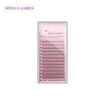 SONG LASHES® 0.07 Thickness High Quality Pre-fanned 4D Volume Lashes Eye... - €6,65 EUR
