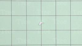 V351000000 Genuine Echo / Shindaiwa Adaptor (Collar) - $6.29