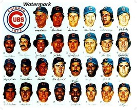 MLB 1973 Chicago Cubs Color Team Picture 8 X 10 Photo Picture Free Shipping - $5.99