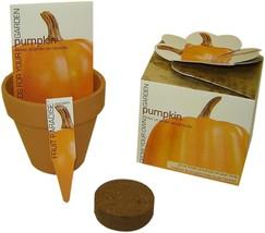 S.F. Imports GB-PUMPKIN/MD Grow Your Own Medium Vegetable Kit, Pumpkin - $17.36