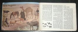 Walter Ferguson Guide Mammals Of Israel Children Book Vintage Hebrew Israel 1972 image 5