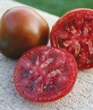 25 Seeds Black Truffle Tomato - $18.81