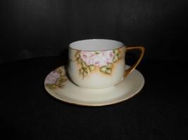 Rosenthal Donatello Wild Rose 1922 Green Mark Coffee Cup & Saucer B - $9.50