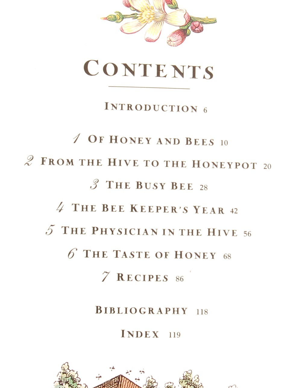 Honey From Hive to Honeypot Sue Style Cookbook Recipes History of Honey Bees