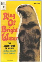 Ring of Bright Water Dell Movie Comic, 1969 FN/FINE+ - $19.28