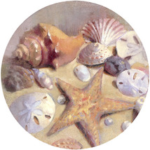 Sea Shells Sandstone Coasters - $20.00