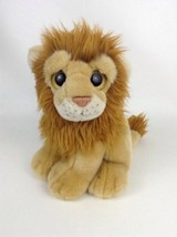 3876e1a1fb0 TY 2011 Wild Best Kingston The Lion Medium Buddy 9 quot  Plush Stuffed  Animal.
