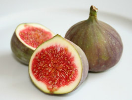Organic Heirloom RARE 50 Seeds Sweet Common Fig Fruit Tree Seeds - $9.88