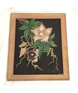 Hale Pua Exotic Hawaiian Woodrose Flower Signed Art Illustration Drawing - $321.75