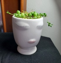 "String of Pearls Succulent in Doll Planter, Live Plant in Ceramic Face Pot 2.5""W - $14.99"