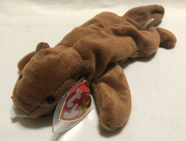 TY BEANIE BABY BUCKY DATE 6/8/1995, P.V.C. STYLE 4016 - NEW OLD STOCK - $10.99