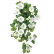 Petunia Hanging Stem by OakRidge Outdoor-White - $17.74