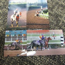 several 4x6 photos of SKIP AWAY at the 1997 Breeders Cup at Hollywood P... - $2.00