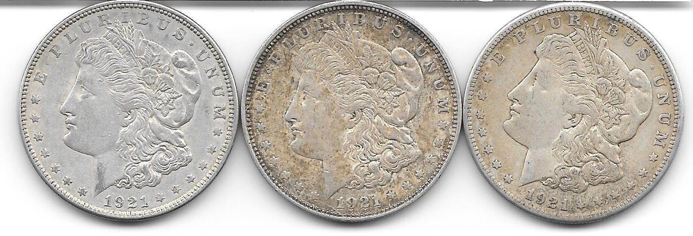 Nice group of three Morgan Dollars from 1921. - $78.00