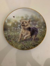 Danbury Mint The Thrill of the Chase Paul Doyle Yorkshire Terriers Plate - $8.90