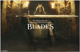 Nice Elder Scrolls Blades Poster - $39.00