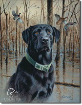 Ducks Unlimited Great Retrievers Black Dog Hunting Nature Metal Sign - $20.95