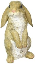 Eastwind Gifts 10016953 Curious Rabbit Garden Statue - $20.86