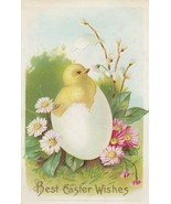 Vintage Postcard Easter Chick Hatches from Egg Pink and White Daisies Em... - $6.92