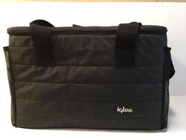 Igloo Cooler/Hot Bag Large Size - $4.94