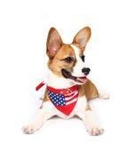 Yani HG-PLJ1 Pet Dog American Flag Collar Pet PU Canvas Decorative Cool Collar - - £13.27 GBP