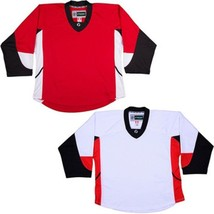 Team Lot/Set Of 10 Ottawa Senators Hockey Jerseys Blank Or With Name & Number - $225.97+