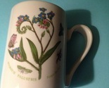Portmeirion mug thumb155 crop
