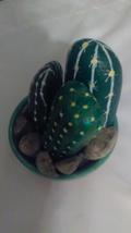 Cacti image 4