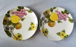 Noritake Craftone Harvest Time 8782 Salad Plate Set of 2 Plates Home Dining - $28.88