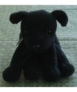 Nice Cute Beany Stuffed DogToy, Luke, Gently Used, VGD CND - $5.93