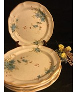 "Mikasa Stoneware Garden Club ""Day Dreams"" 11 Inch Dinner Plate Set Of 4 - $45.53"