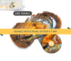 1 pearl Orange Pearl Oyster Akoya Oyster Pearl Packed 6-7mm 10 / 20 / 30... - $55.66+