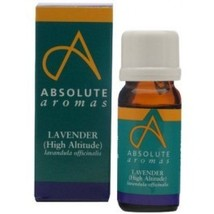 Absolute Aromas - Lavender Counter Display - $7.00