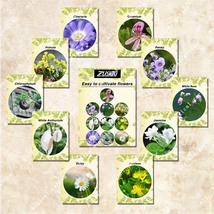 380Pcs 10 Kinds Of Flowers MIX Seeds For Home Garden For Busy People - $4.92
