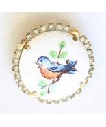 Hand-painted Champlevé Enamel & Rhinestone Blue Bird Brooch 1950s vintag... - $12.95