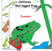 Endangered Species Learning Coloring Book --eBook-- (pdf) Animal Colorin... - $1.99
